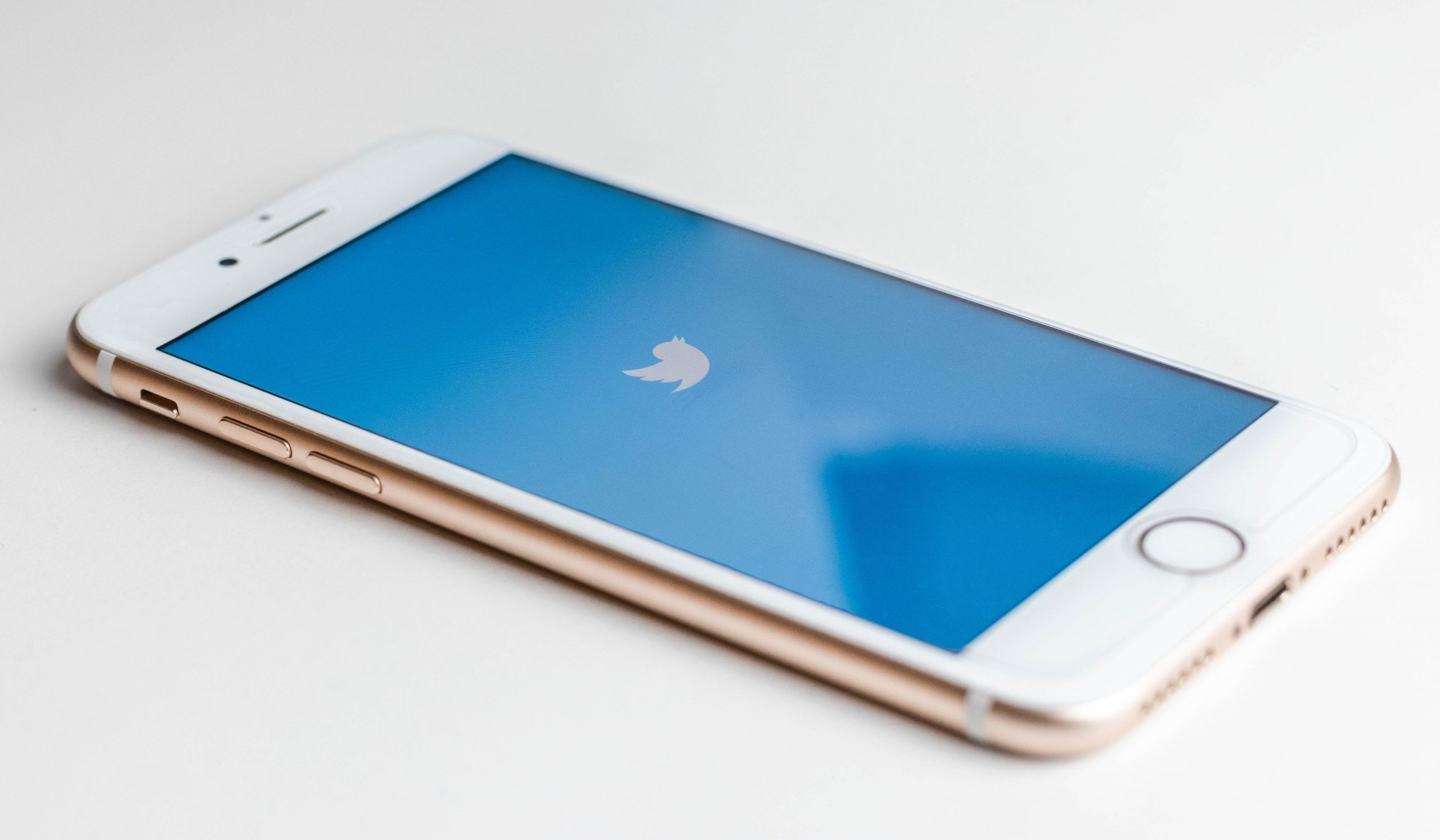 Twitter Logo on iPhone